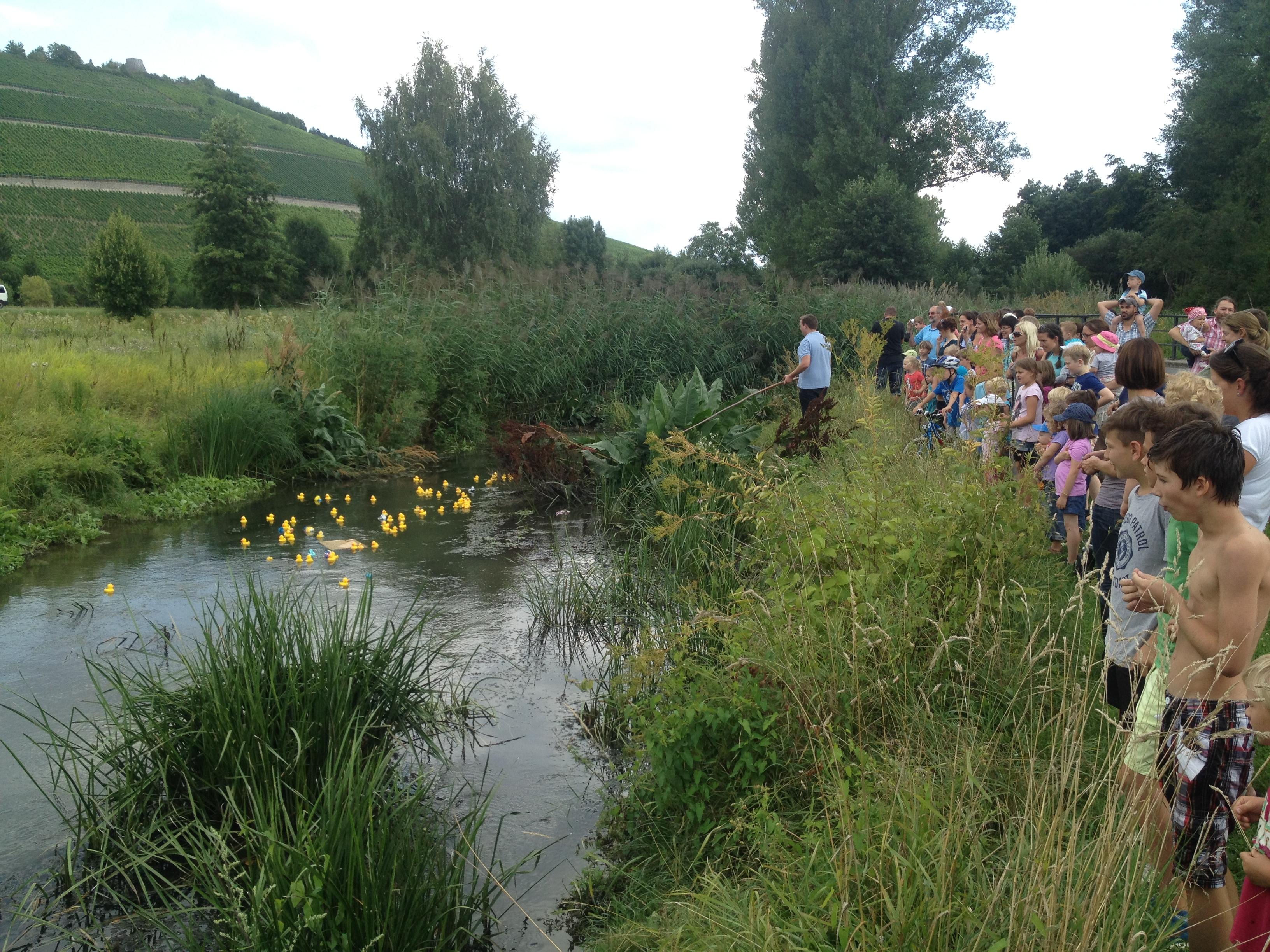 Eng gedrängt die Besuchermassen am Ufer, während die Enten um die Platzierungen kämpften.