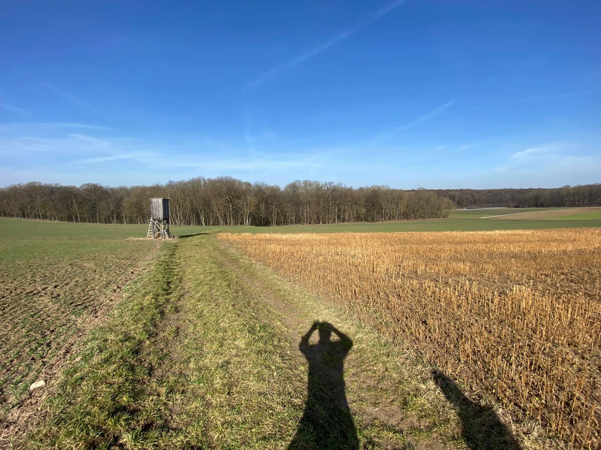Knapp 100.000m² sollen oberhalb Lindelbachs zu einem neuen Steinbruch werden.